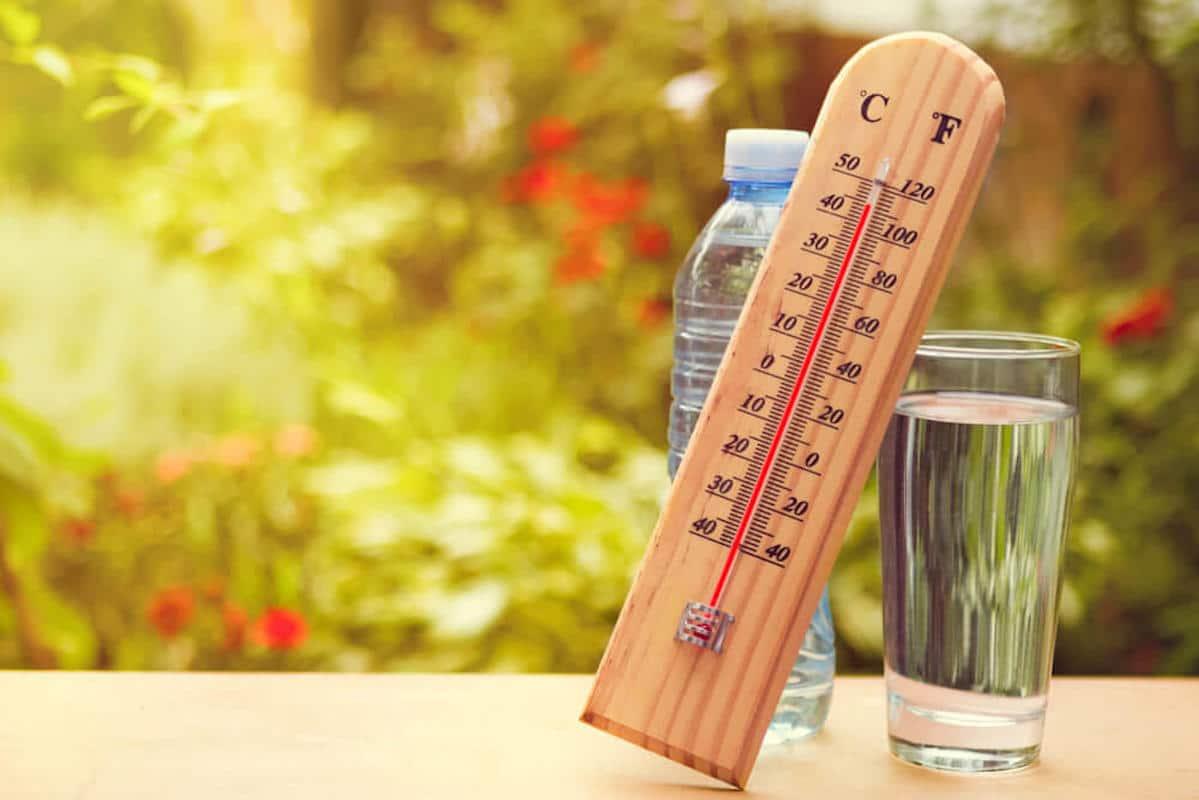 Жара, лето, прогноз погоды
